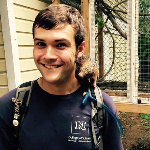 Meet Stengl-Wyer Fellow: Colin Morrison