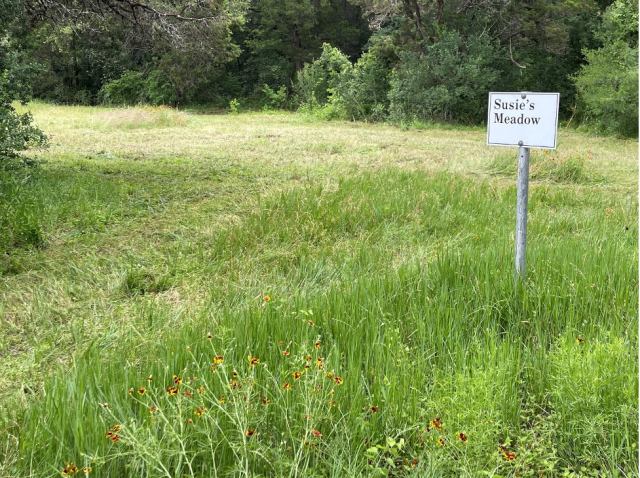 Mowing with Purpose: Managing Invasive Grasses at BFL
